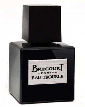 Eau Trouble van Brécourt