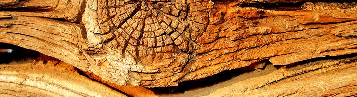 Droge hout geuren